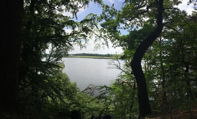 Elbe Aussicht im Sommer
